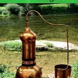 Les Dimanches bien-être - Alchimie végétale