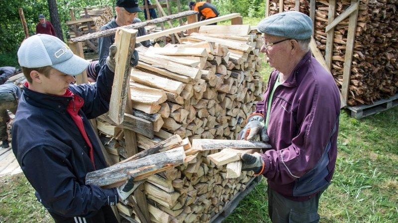 La nouvelle jeunesse de la forêt finlandaise