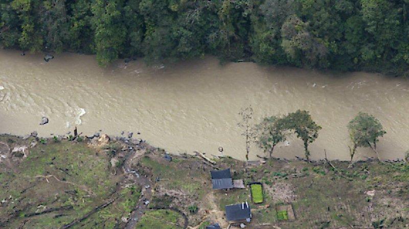 Outre l'abattage inconsidéré des arbres pour l'agriculture, l'exploitation minière illégale et les plantations de coca, matière première de la cocaïne, menacent les richesses naturelles de l'Amazonie en Colombie (archives).