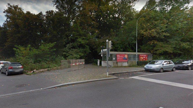 Lausanne: le tramway verra le jour sans la destruction de la forêt du Flon