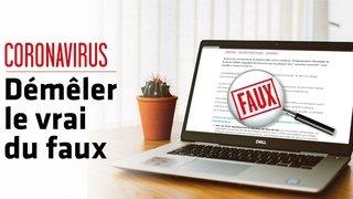 Coronavirus – Fake news: non, ce vaccin bovin ne prouve pas que le virus existe depuis des années