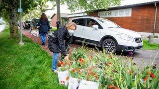 Morges: la Fête de la Tulipe assure son avenir
