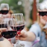 Dégustation de vin chez un encaveur