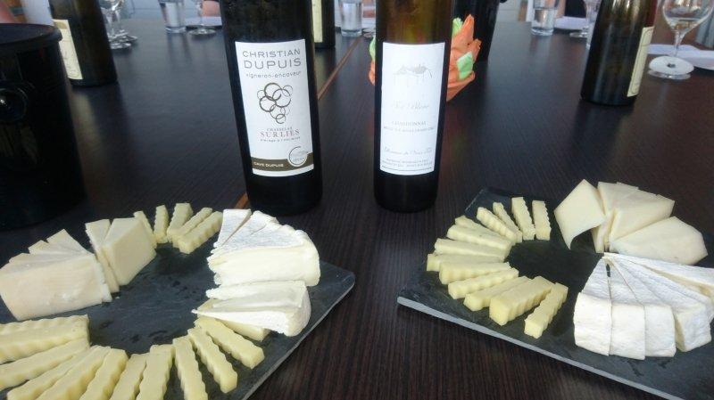 Dégustation Vins et Fromages à la Vallée de Joux
