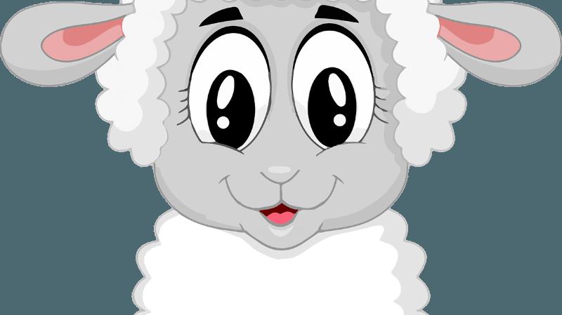 Programme d'animations - Randonnées