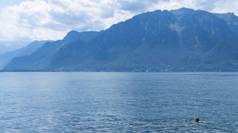 Cyanobactéries: on peut plonger tranquille à Lausanne et Lutry