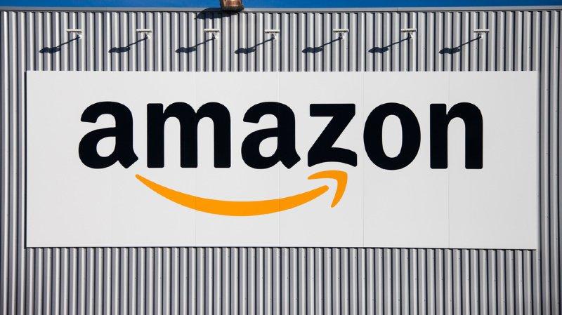 Commerce en ligne: Amazon France retire des poupées sexuelles à l'effigie d'enfants