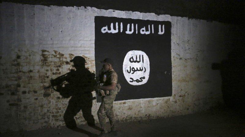 Terrorisme: deux partisans de l'Etat islamique devant le Tribunal pénal fédéral