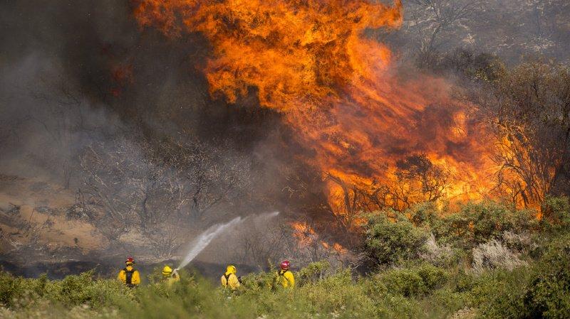 Incendies: Les feux dans le monde moins nombreux mais plus violents