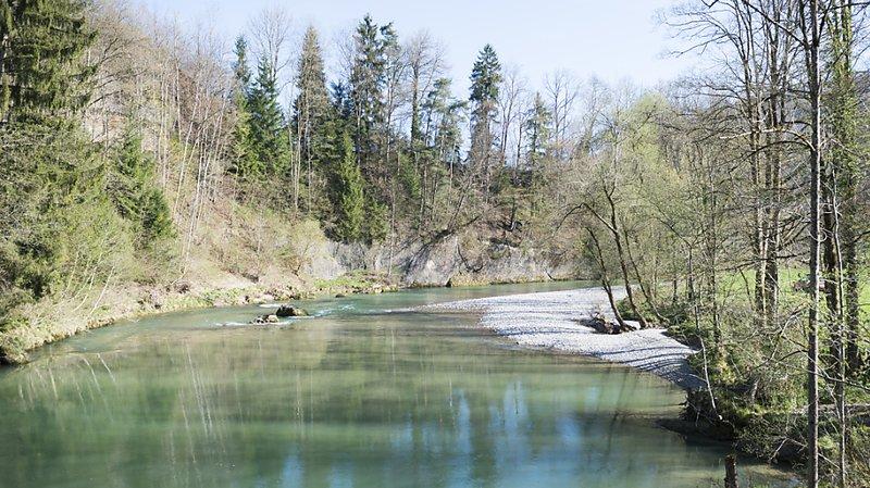 Environnement: une nouvelle méthode développée pour prédire la biodiversité des rivières