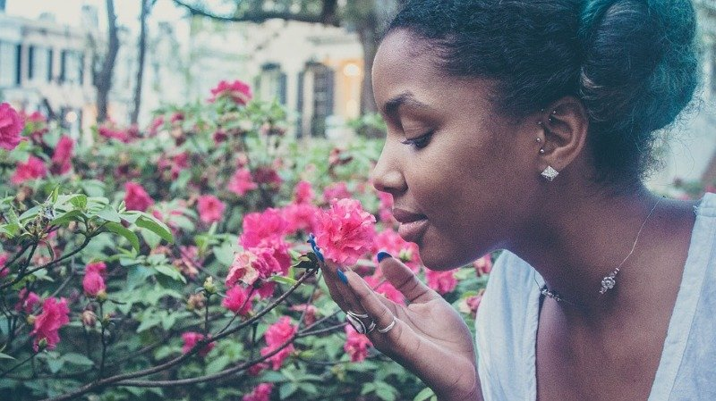 L'aromachologie (influence des odeurs)