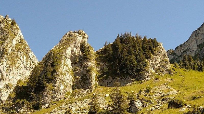 L'accident a eu lieu sur l'arête des Gais Alpins, près de la dent d'Hautaudon.