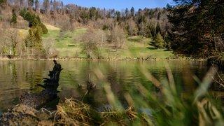 En quête de quiétude autour du lac de l'Arboretum