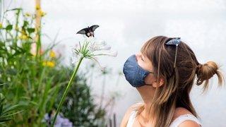 Gland: la féerie des papillons