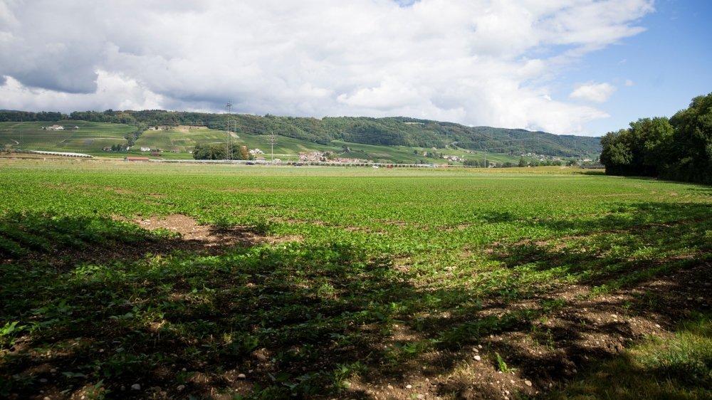 Le site de Lavasson se situe sur la commune de Gland, à moins d'un kilomètre du village de Luins, opposé au projet.