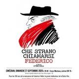 Film, débat - Che strano chiamarsi Federico
