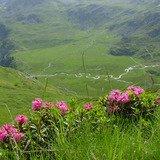 A la découverte des paysages du vallon de Réchy
