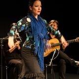Art Dance présente Flamenco Passions