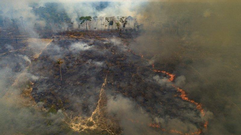 """Santé: une étude montre que les incendies """"empoisonnent l'air"""" en Amazonie"""