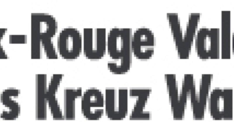 Assemblée générale/table ronde Croix-Rouge Valais