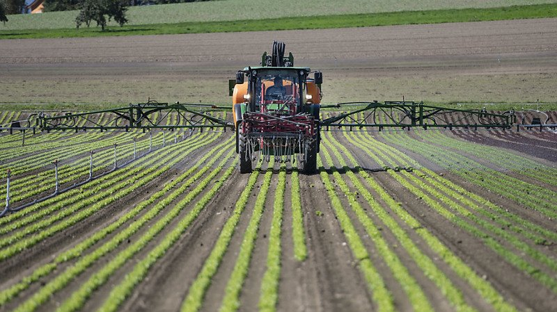 Le Conseil fédéral a rappelé qu'il avait déjà pris des mesures contre les pesticides (image d'illustration).